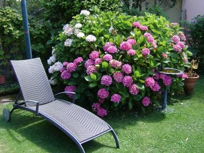 Jardin clos à La Masana Lorient