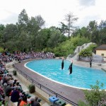 Spectacle dressage Zoo Pont-Scorff